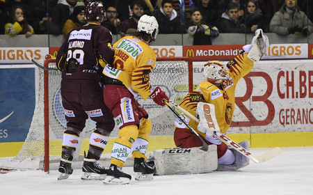 NL : GSHC vs SCL Tigers